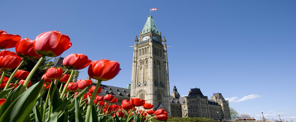 Ottawa Tulip Festival One-day Tour